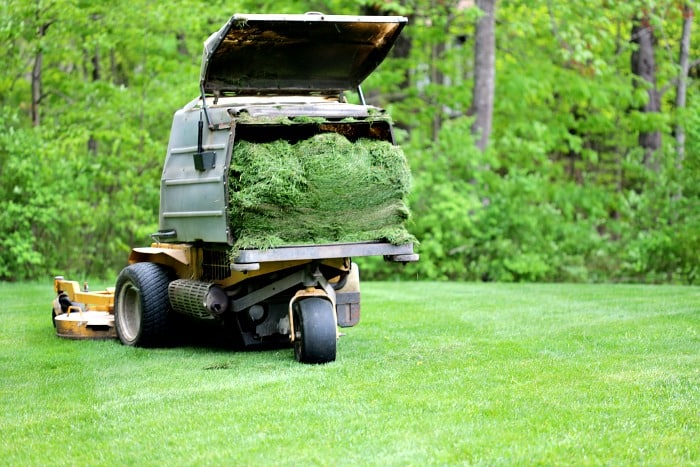 ride on lawn mower with bag full of grass clippings