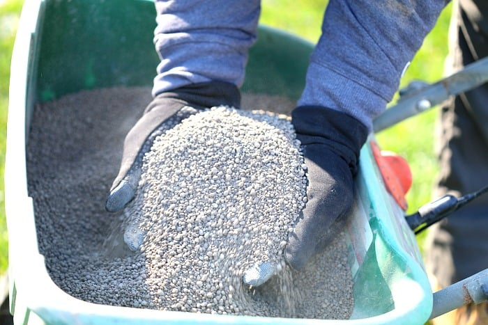 man with black gloves holding up a pile of white limestone pellets over a green lawn spreader