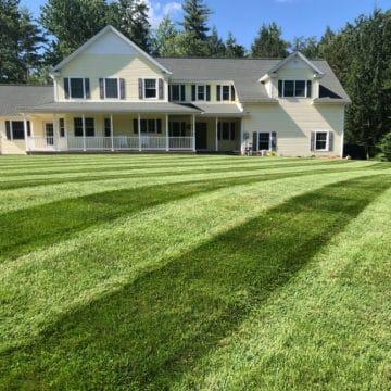 Green lawn using simple lawn care program