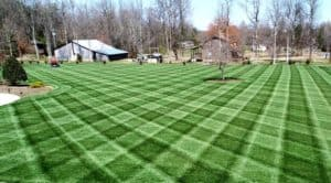 Green lawn with using 3 prodcut lawn care schedule with checkered stripes