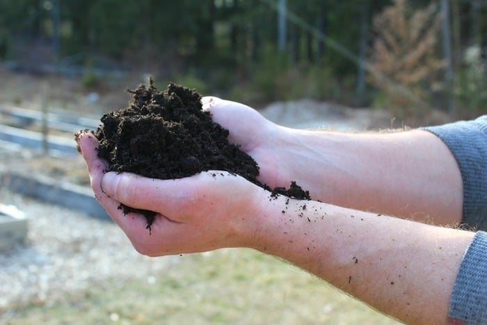 man holding black soil about to do a soil test
