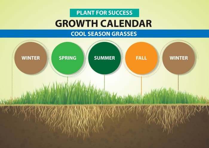 chart showing when cool season grass is dormant and when it is growing based on the season