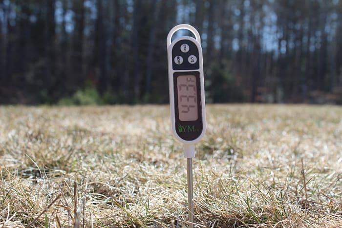soil temperature reading using a soil thermometer that is probing the middle of a lawn
