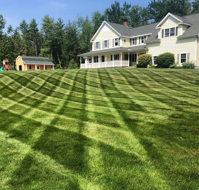 green summer lawn with mowing stripes and house in the background